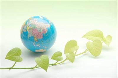 廃棄物による環境問題の現状